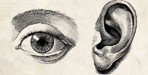 Eye and Ear